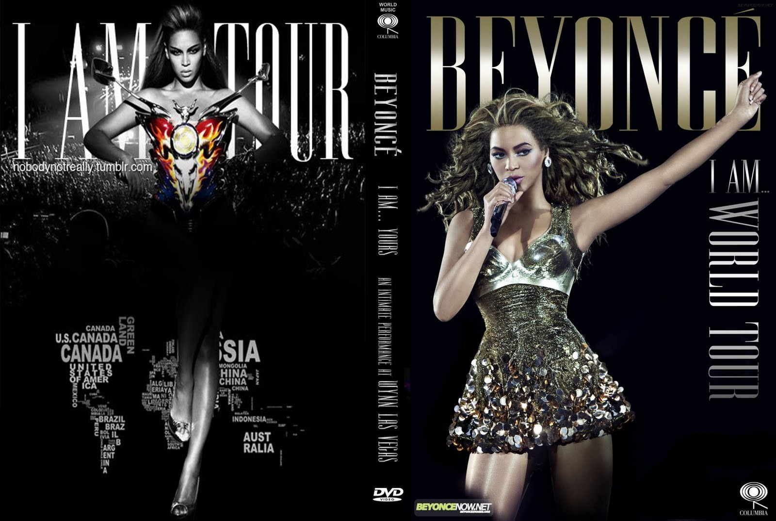beyonce i am world tour diva - photo #4